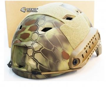 【翔準軍品AOG】沙蟒 海豹 高級 頭盔  面具 護具 HL-10 角色扮演 電影 戰術 裝備  E0120DB