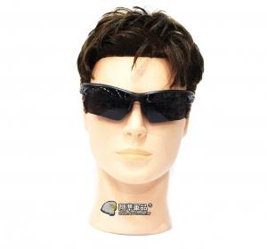 【翔準軍品AOG】 騎行護目鏡 墨鏡 射擊眼鏡 基本配備 生存遊戲 戶外 休閒 生活 E03009-1L